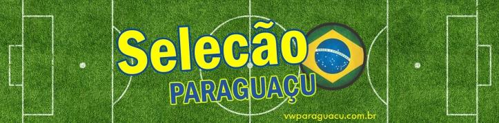 banner selecao