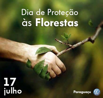 protecao florestas paraguacu